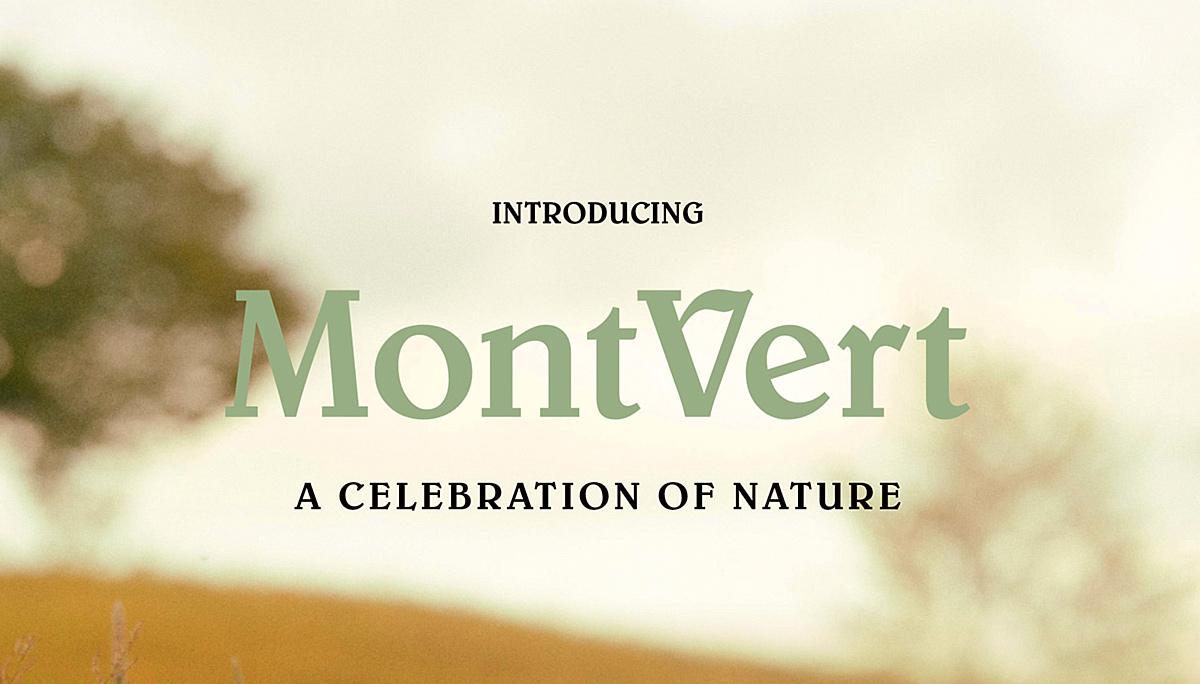 MontVert Condos intro